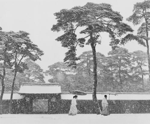 L 39 uvre pr tres shinto stes dans le jardin du temple meiji for Jardin 41 rue du temple